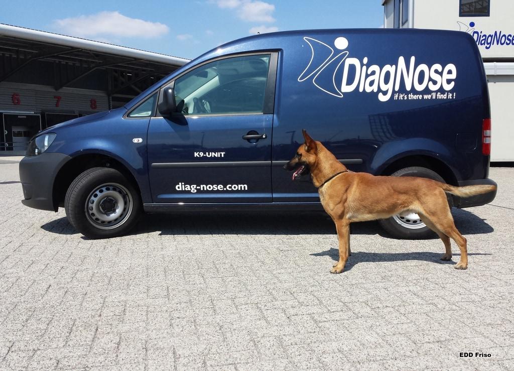 DiagNose voertuig met EDD