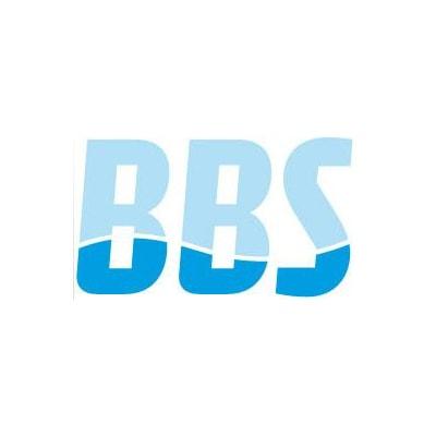 Binnendijk-Bree Surveys B.V.